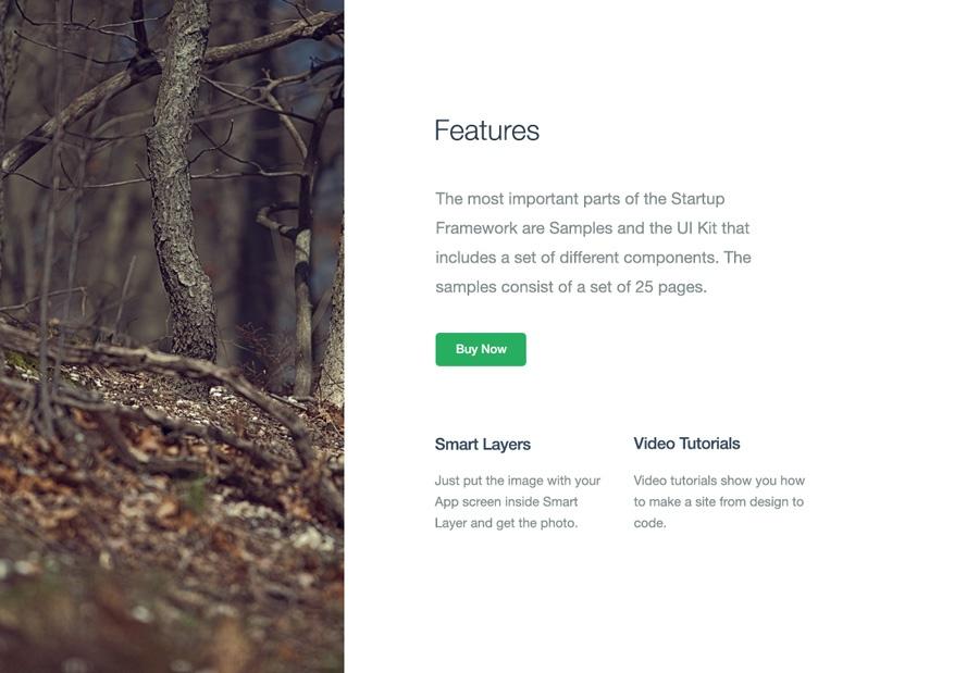 startup-framework-feature-17