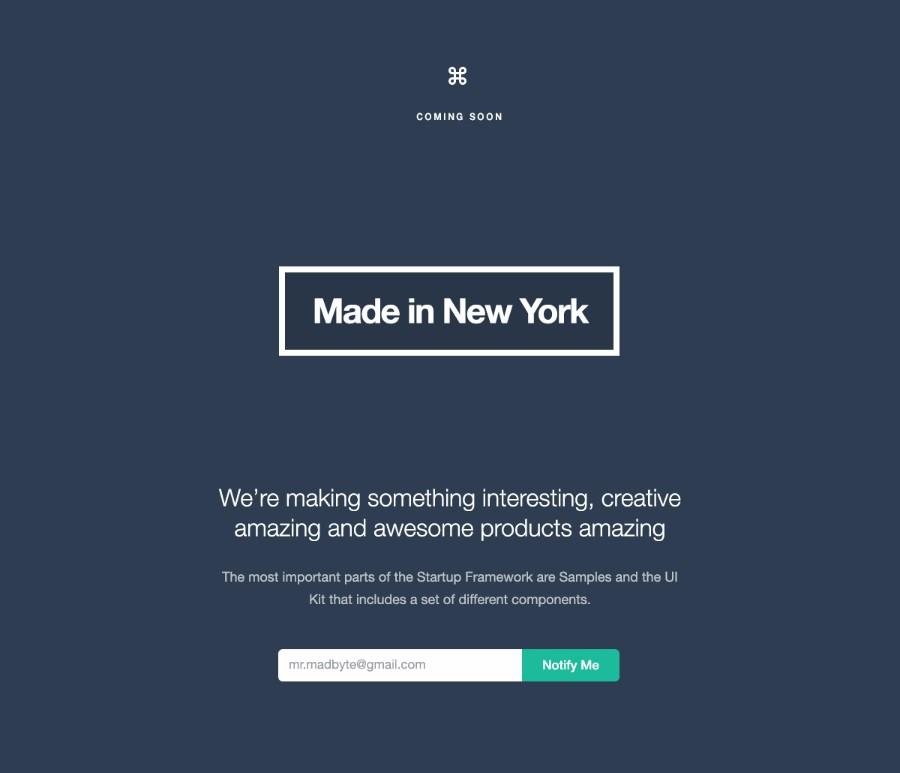 startup-framework-form-1